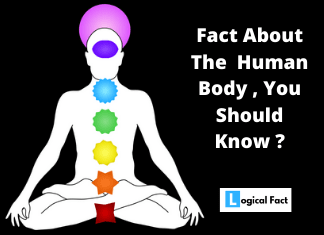 Facts About The Human Body Hindi
