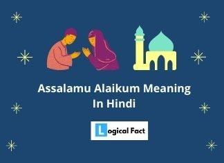 Assalamu Alaikum Meaning In Hindi