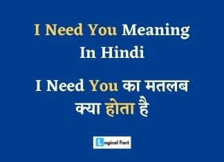 I Need You Meaning In Hindi