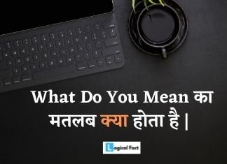 What Do You Mean Meaning In Hindi
