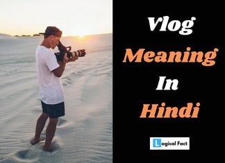 Vlog Meaning In Hindi